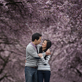 Vancouver Cherry Blossoms - Engagement Session